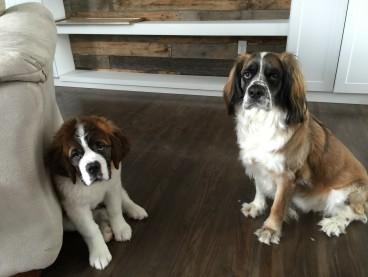 Oscar and Daisy