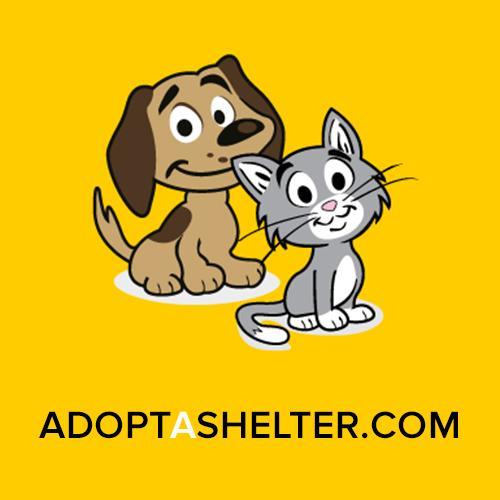 Adopt A Shelter